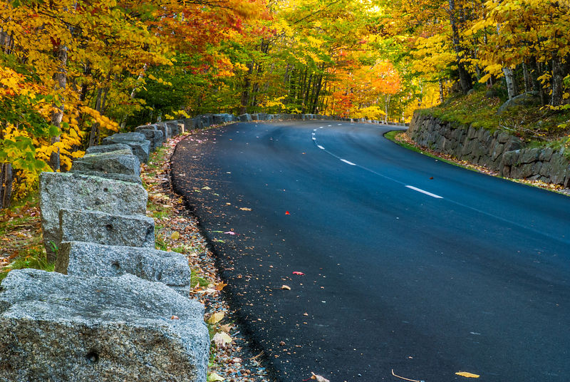 Fall along roadway  in Acadia National Park, Maine
