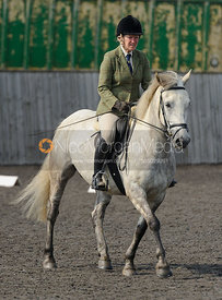 Ranksboro Polo dressage, 8th June 2016.