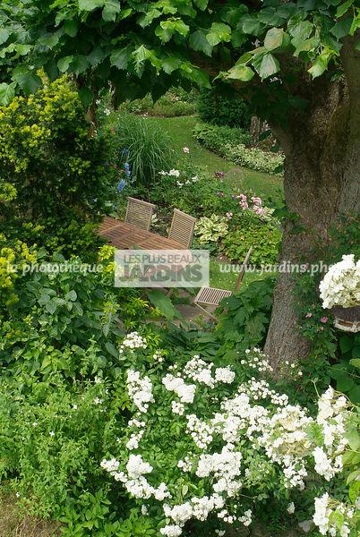 la photothèque | LES PLUS BEAUX JARDINS | Meuble de jardin. Rosa ...