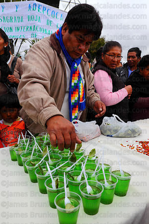 Man decorating pots of jelly made from coca leaf extract with coca leaves at trade fair promoting alternative products made f...