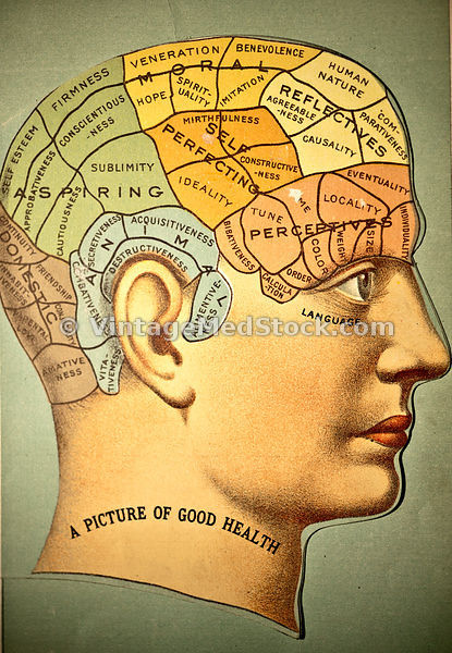 Phrenology & Pseudoscience images