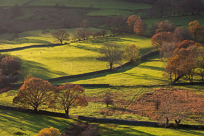 Newland's Valley in autumn, Lake District, Cumbria, England, UK. November 2014.