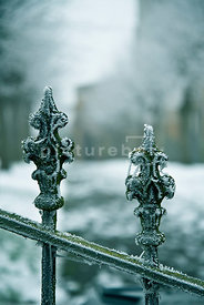 An atmospheric image of hoar frost on the old iron gates of a church, in winter.