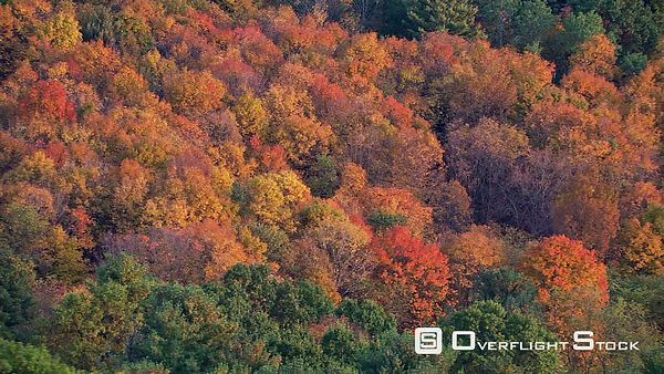 Aerial view of fall foliage on New England hillside