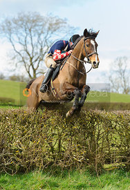 Ran Morgan jumping the last hedge - Harborough Ride 2014