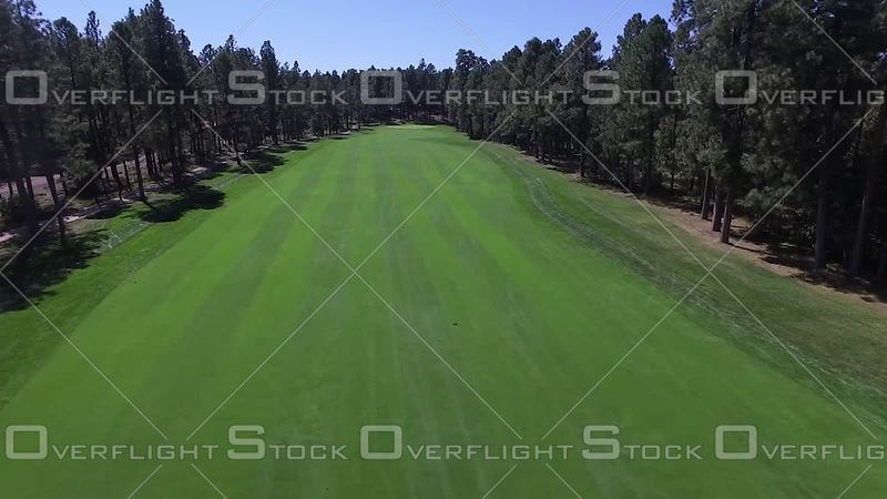 Par 5 Fairway White Mountain Golf Arizona
