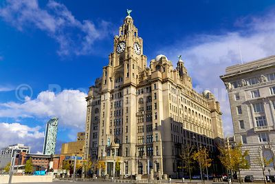 The Royal Liver Building on a Sunny Day against a brilluant blue sky - royalty free stock photo