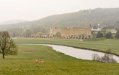 Misty April morning at Chatsworth