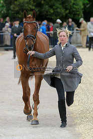 Emily Llewellyn and GREENLAWN SKY HIGH - First Horse Inspection, Mitsubishi Motors Badminton Horse Trials 2014