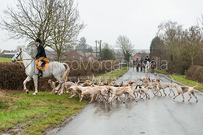 Jack Bevan with the Fernie Hunt hounds