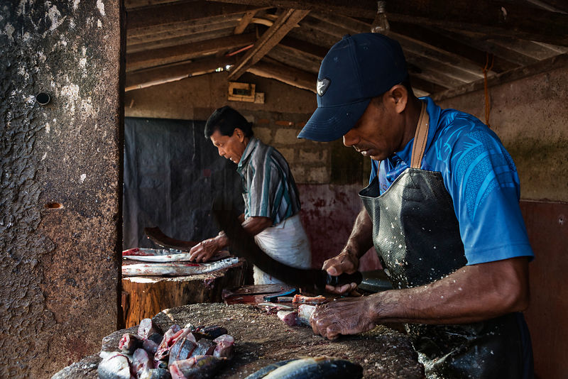 Butchers Preparing Freshly Caught Fish