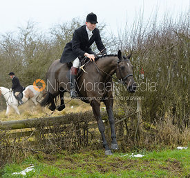 William Bell jumping the hunt jump at Newbold - The Fitzwilliam Hunt visit the Cottesmore at Burrough House
