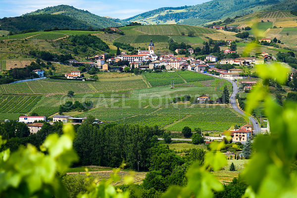Letra village and vineyards of Beaujolais