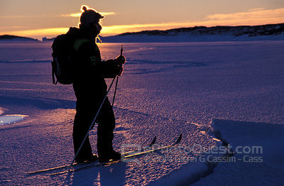 Antarctic Expeditioner on Sea-Ice
