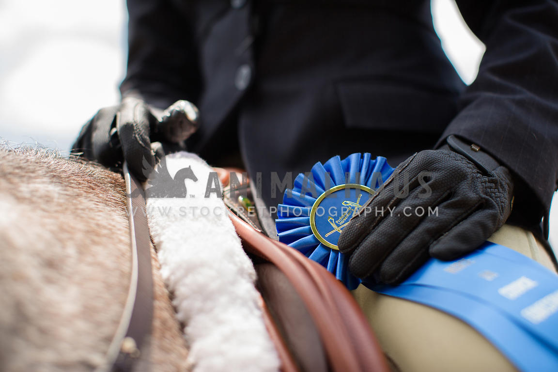 rider on horse holding blue ribbon