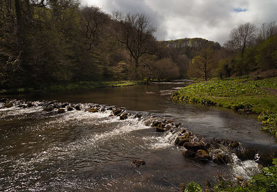 Early summer in Chee Dale Derbyshire