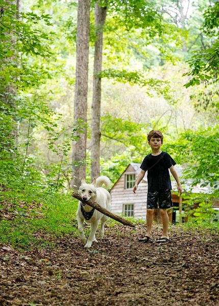 Boy Walking With Dog in Woods