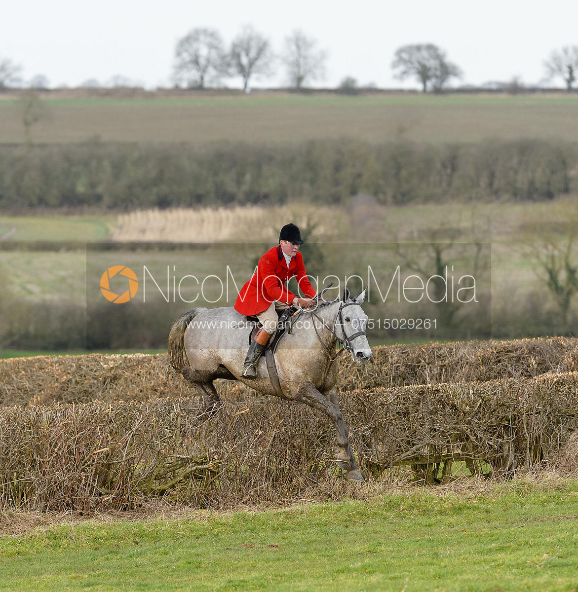Harry Horton jumping a hedge on Greenall's