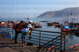 Men looking at view over fishing boats in port , Iquique , Region I , Chile