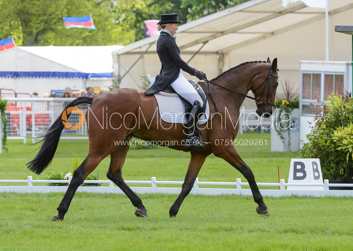 Megan Heath and ST. DANIEL- Dressage phase, Mitsubishi Motors Badminton Horse Trials 2014