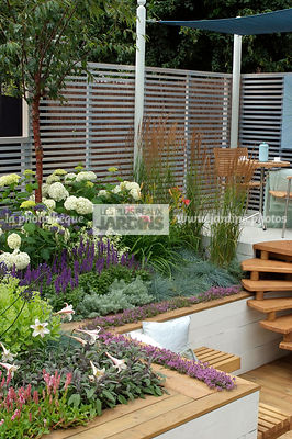 Aromatic plant, Border, Border with flowers, garden designer, Perennial, Small garden, Terrace, Thyme, Trellis, Urban garden, Contemporary Terrace, Digital, Grasses