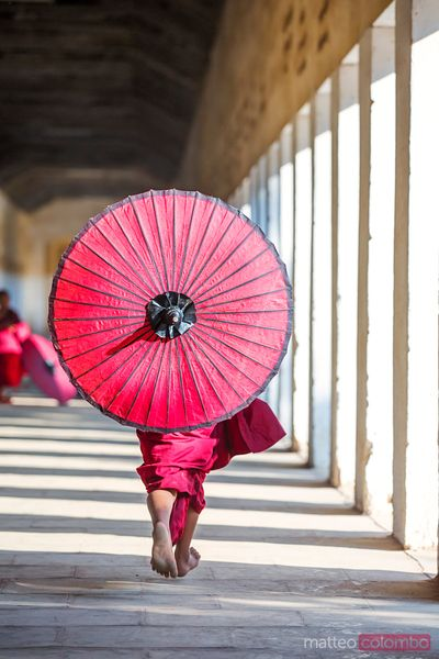 Novice monk running with red umbrella, from the back, Myanmar