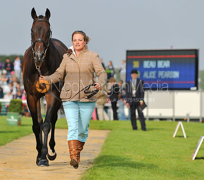 Alice Pearson and Beau Bear - 2nd Inspection - Burghley 2010