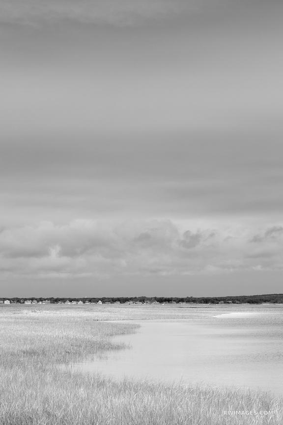 SALTMARSH HAMPTON BAYS LONG ISLAND NEW YORK VERTICAL BLACK AND WHITE