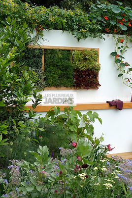 garden designer, Salad, Digital, Foliage wall, Green wall, Vegetation wall, Wall decoration