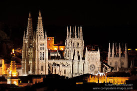 Cathedrals and Gothic Art