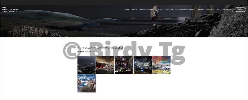 MyPixelDiary by Birdy Tg | Birdy Tg award winner at Gala