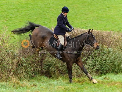 Tiny Clapham - The Cottesmore Hunt at Tilton on the Hill, 9-11-13