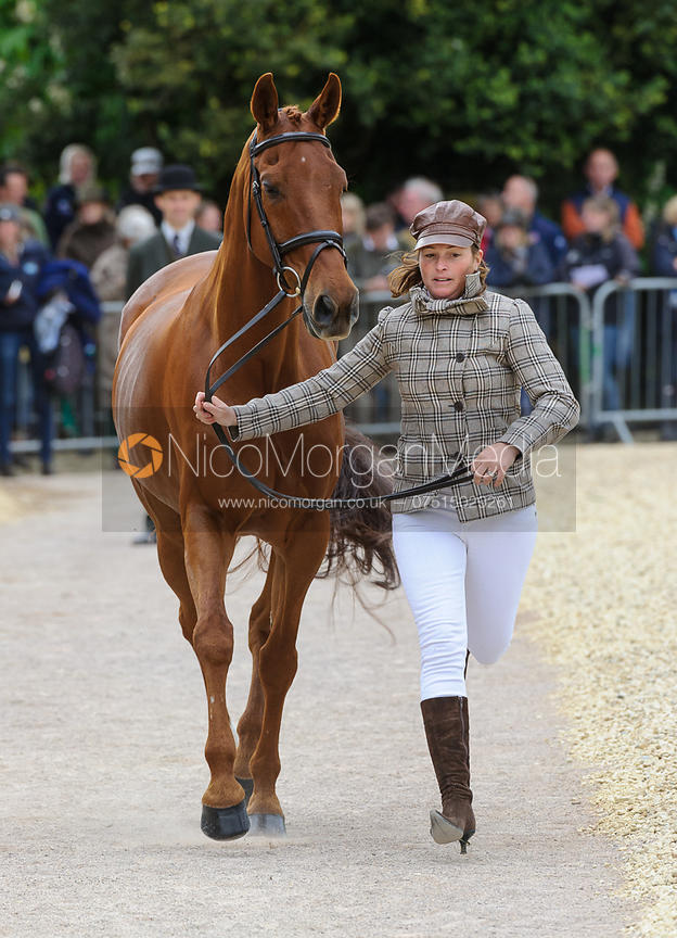 Selina Milnes and BODIDILY - First Horse Inspection, Mitsubishi Motors Badminton Horse Trials 2014