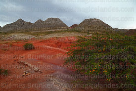 Red desert formations in area known as Cementerio de Tortugas, Torotoro National Park, Bolivia