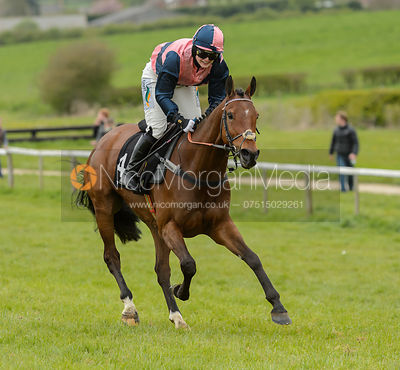 Gina Andrews (DISTANT RAIN) - Race 7 - The Quorn Point-to-Point 2017