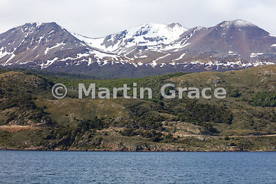 Mountains and Nothofagus forest of Tierra del Fuego landscape north of the Beagle Channel, Tierra del Fuego, Argentina