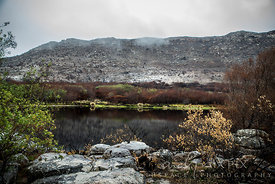 Silvermine Dam after the fire of March 2013