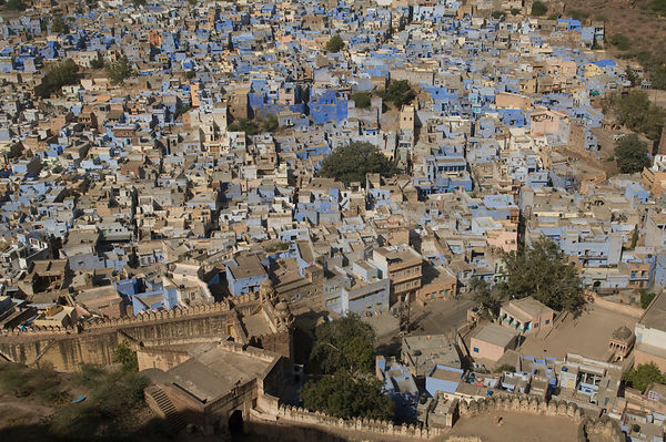 Looking down on blue city of Jodhpur, as seen from Fort, Rajasthan, India