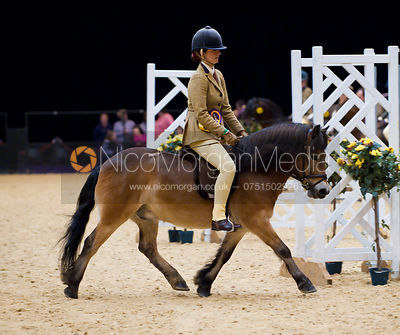 122cms Working Hunter Pony Class, Horse of the Year Show 2010