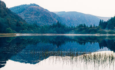Foggy_lower_lake_Glendalough_26112016.jpg