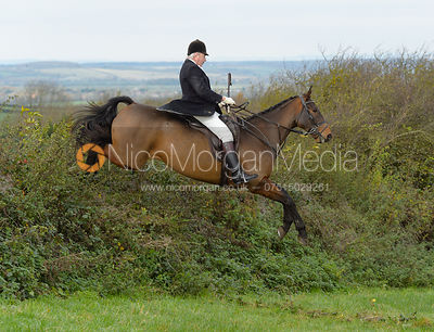 Harry Westropp jumping a hedge above Clawson Thorns