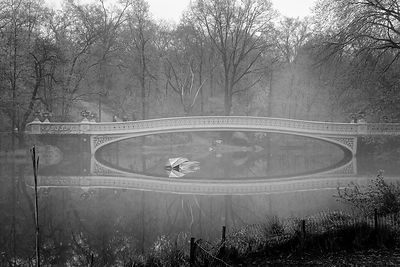 Bow Bridge, Central Park, New-York (Etats-Unis)