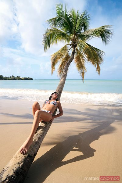 Woman relaxing on palm tree on tropical beach in the Caribbean
