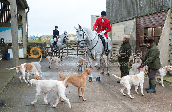 Andrew Osborne and the Cottesmore Hounds - The Cottesmore Hunt at Northfield Farm 29/1/13