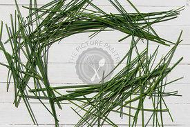 Fresh chive herbs on a white background