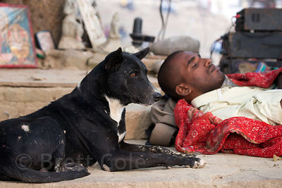Street dog resting alongside a man on Assi Ghat, Varanasi, India