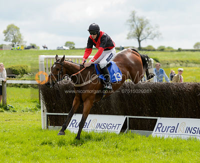 Race 2 - Restricted - The Melton Hunt Club Point-to-Point 2017