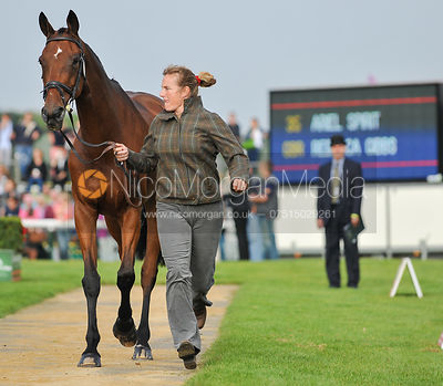 Rebecca Gibbs and Ariel Spirit - 2nd Inspection - Burghley 2010