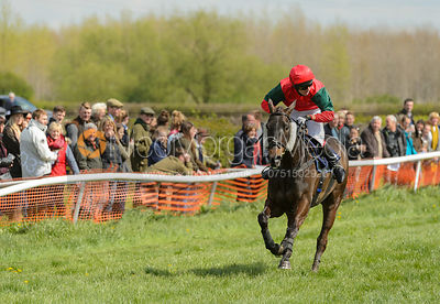 WARDEN HILL (Tom Chatfeild-Roberts) - Race 2 Mixed Open - South Notts Point-to-Point 2017