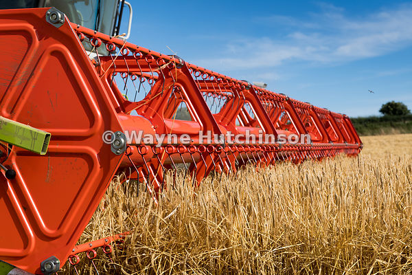 Hutchinson Photography - Farm Images   Close up of a Claas V900 35ft